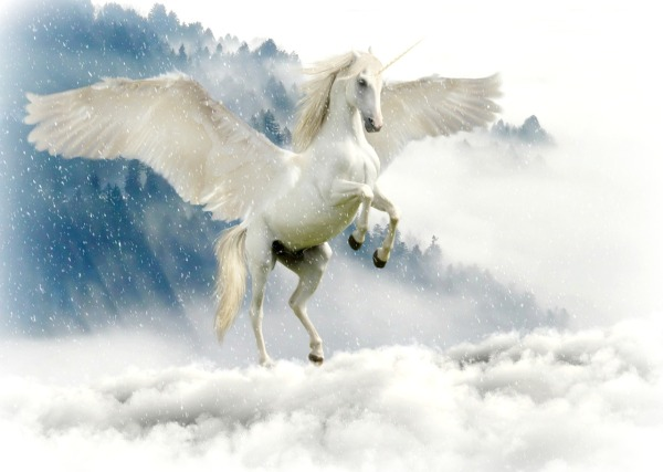 unicorn-2875349_1280