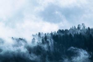 fog-1535201_1280